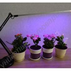 Лампа настольная для комнатных растений с регулируемым кронштейном «Алиот», гарантийное обслуживание - 1 год