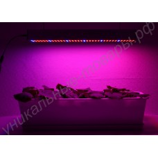 Лампа для освещения растений «Канопус» (48-192 Вт), гарантийное обслуживание - 1 год