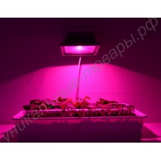 Фитопрожектор на базе полноспектрового фитосветодиода мощностью 30Вт «Этамин», гарантийное обслуживание - 1 год