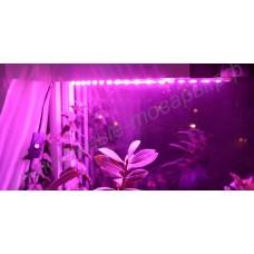 Мини фитосветильник для парников, досветки растений и выращивания рассады «Маркаб», гарантийное обслуживание - 1 год