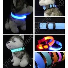Светящийся ошейник (led collar)